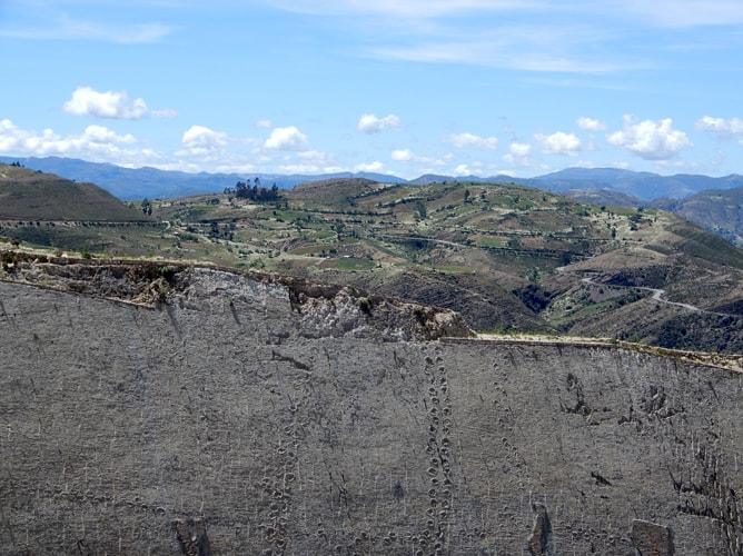 崖となった地盤に残された大型恐竜の足跡