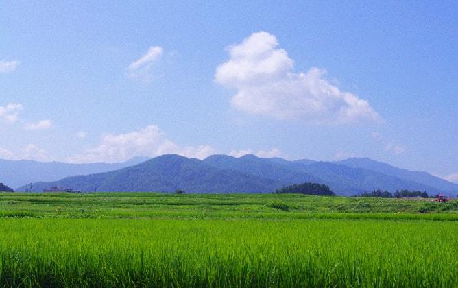夏の青い空、入道雲、そして田園風景