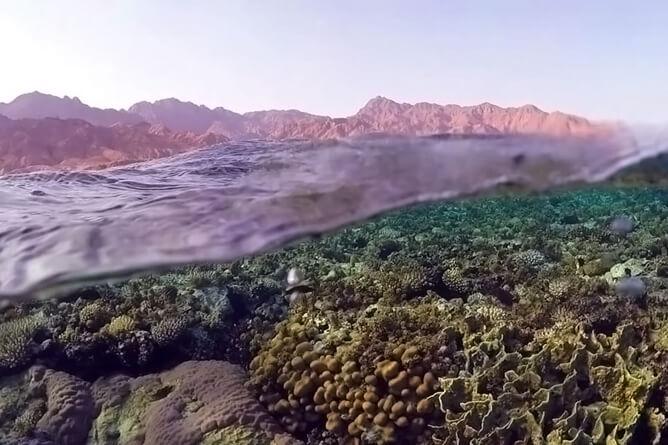 シナイ山を背景に撮影した紅海の海