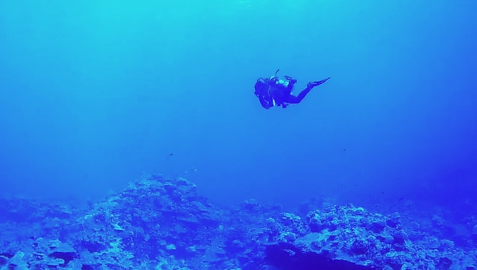 ゴープロ(GoPro)カメラで撮影したスクーバダイビングの水中写真。その3