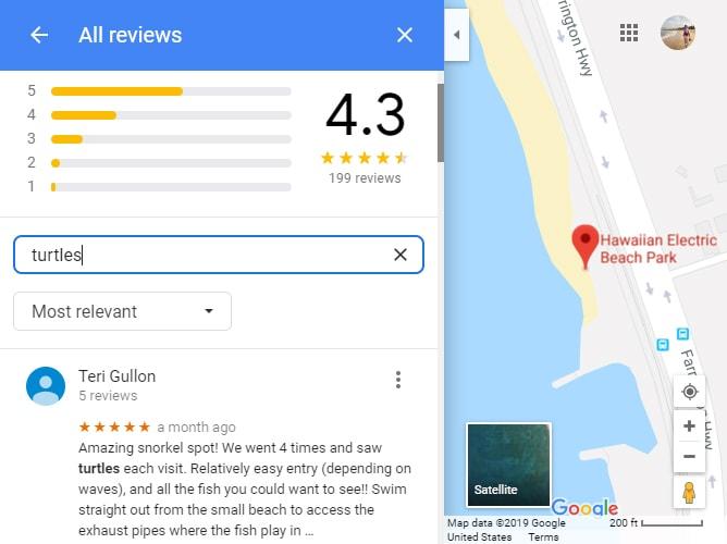 エレクトリックビーチでのシュノーケリングの評価