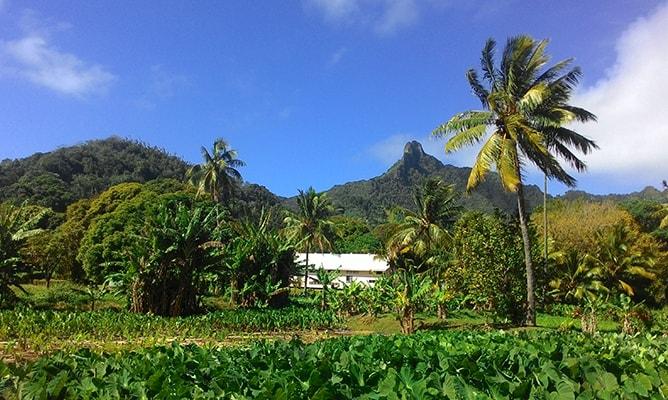 クック諸島ラロトンガ島のテ・マンガ山を望む景色