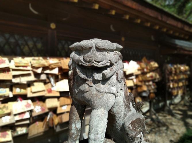 梅宮大社 狛犬と絵馬 2019年3月8日撮影